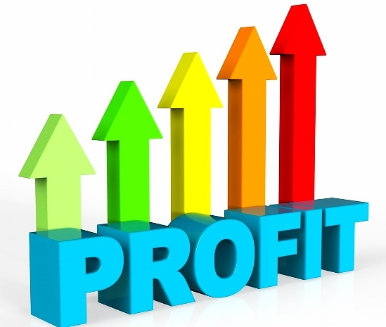 Profit: DO YOU C.A.R.E. ABOUT PROFIT?